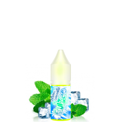 Concentré Icee Mint 10ML Eliquid France Fruizee